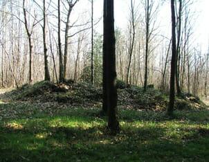 Roman Burial Tumulus, La Motte