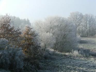 Beautiful, crisp, winter scene at la Croix Spa