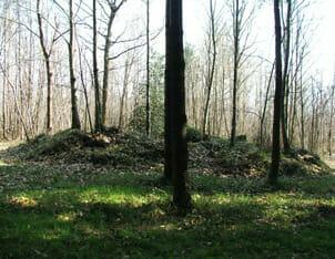 Tumulus de La Motte