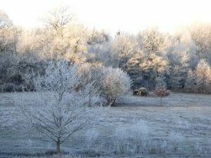 Beau paysage d'hiver à La Croix Spa